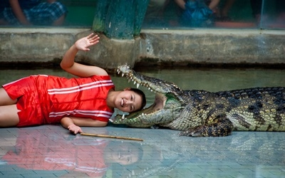 Crocodile Wrestling
