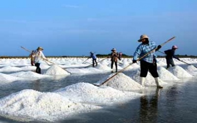See salt and shrimp farms